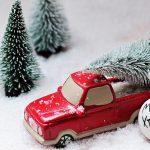 クリスマス後のツリーってどうなる?もみの木の6つの活用方法を紹介!